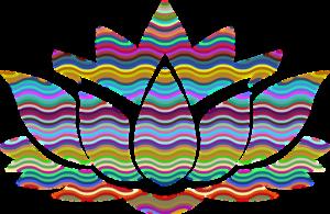 Persoenlichkeiten Anzeichen Erleuchtung Spirituelles bewusstes Erwachen erkennen Erfahrung Anzeichen Spirituell Erwachte Menschen Anleitung Phasen